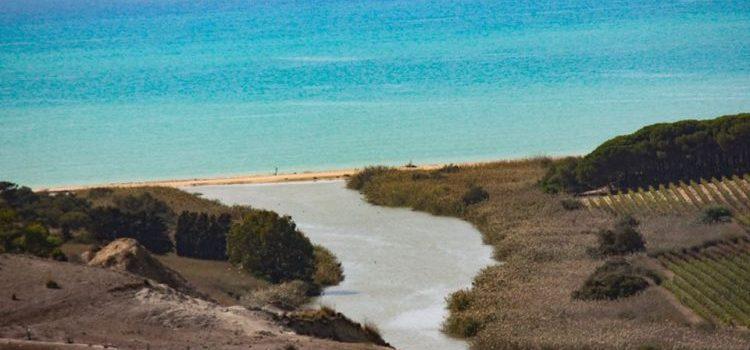 VIDEO – Un posto magnifico, la Riserva della Foce del Fiume Platani